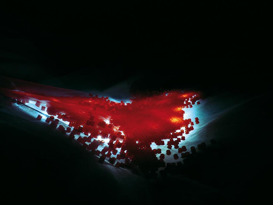 http://annecharlottesaliba.free.fr/files/gimgs/47_cardiogenese.jpg
