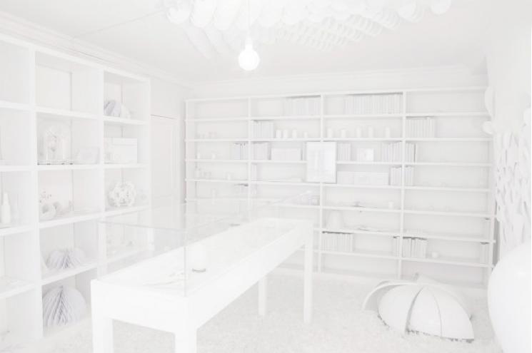http://annecharlottesaliba.free.fr/files/gimgs/71_le-white-concept_v3.jpg